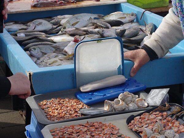 Marché aux poissons de Marseille